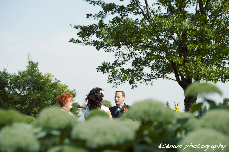 Chicago Wedding Photographer Wedding Photographer Chicago Suburbs Outdoor