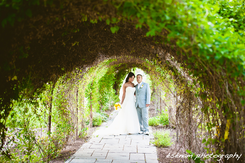chicago wedding photographer chicago suburbs 17