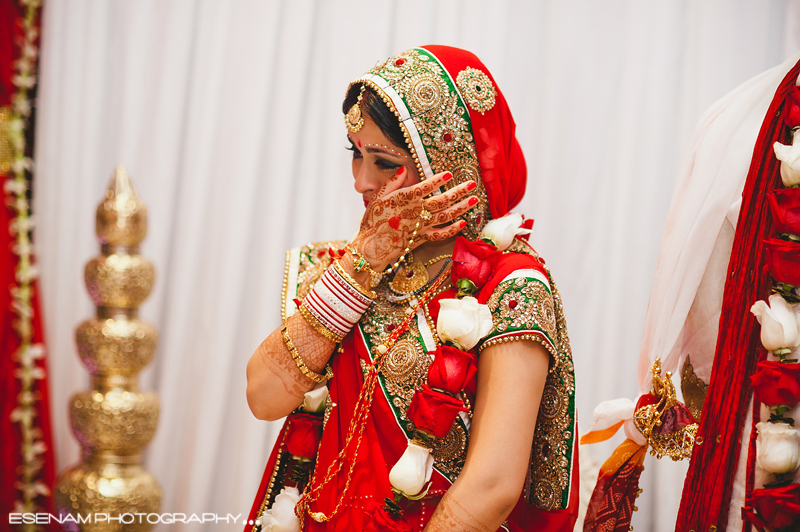 Indian Wedding Photographer Chicago IL 23