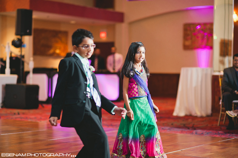 Indian Wedding Reception Chicago IL 8