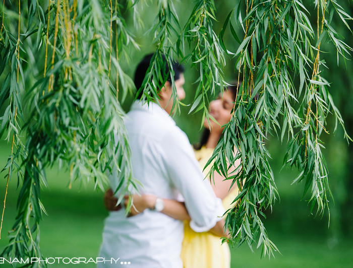 Romy &  Rose's Chicago Engagement - Indian Wedding Photographer Chicago IL